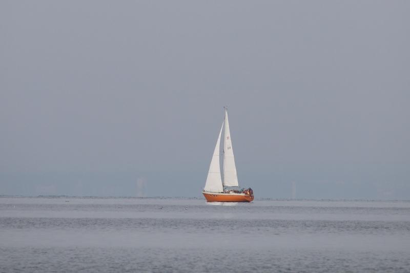absegeln-2019-3014